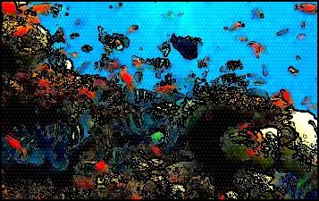 plongee-sous-marine.jpg